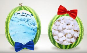 male and female watermelon, female are more sugary and sweet, male more watery